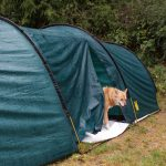 Best Tent for Camping with Dog: 5 Best Tents for Dog Owners